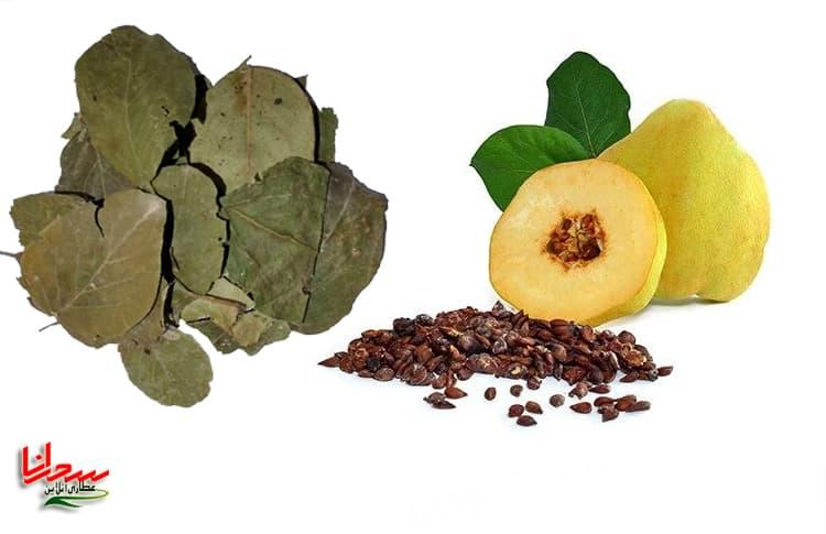 درمان اسهال و برگ درخت به
