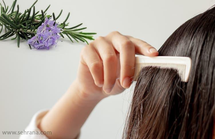 جلوگیری از ریزش مو با عرق رزماری